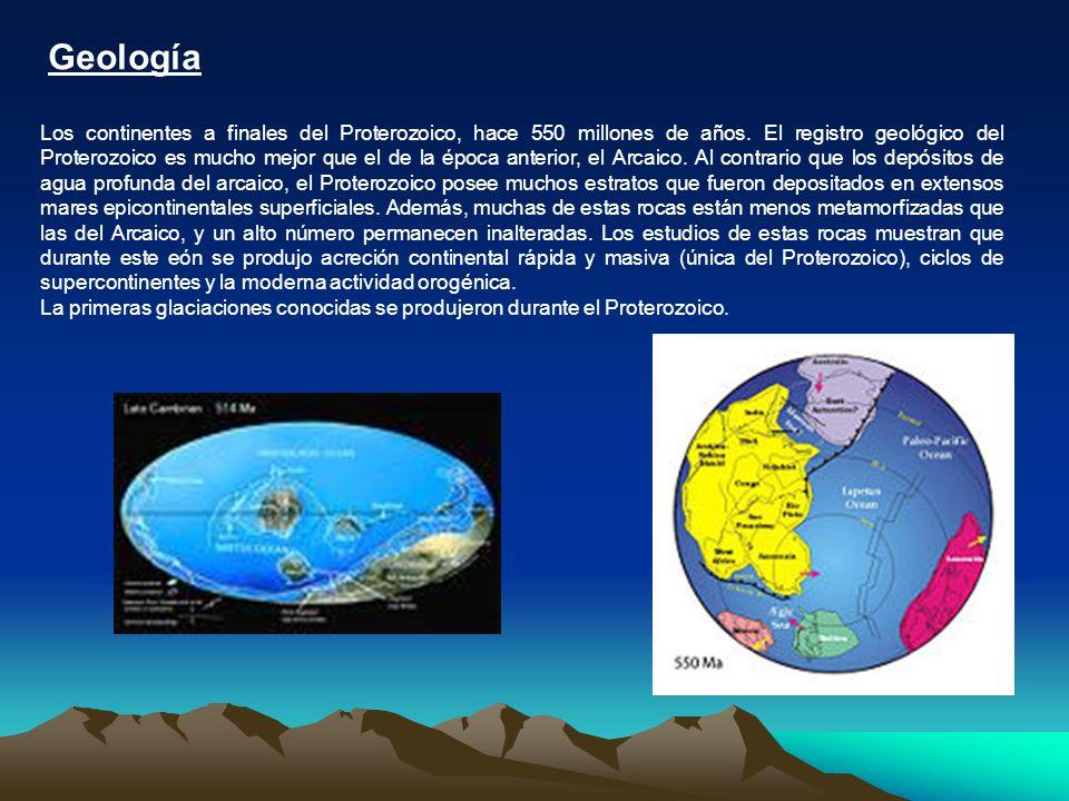 Geología Los continentes a finales del Proterozoico, hace 550 millones de años. El registro geológico del Proterozoico es mucho mejor que el de la épo