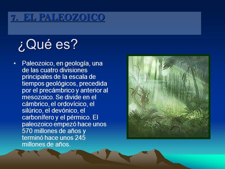 ¿Qué es? Paleozoico, en geología, una de las cuatro divisiones principales de la escala de tiempos geológicos, precedida por el precámbrico y anterior