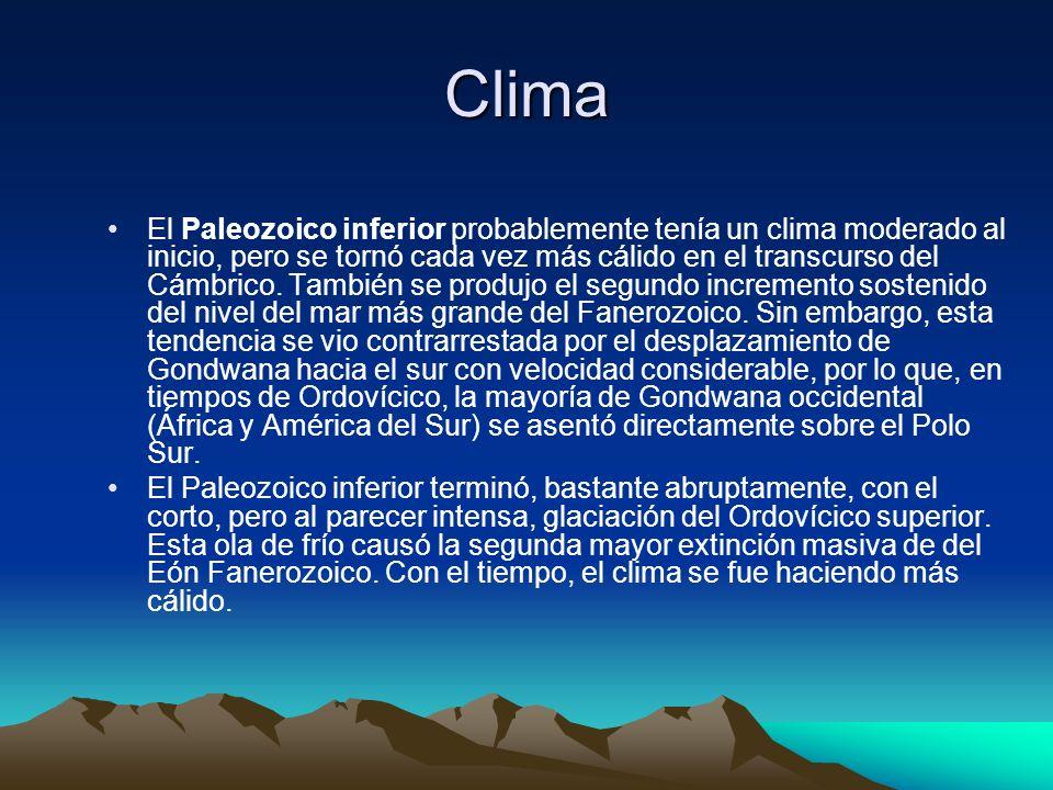 Clima El Paleozoico inferior probablemente tenía un clima moderado al inicio, pero se tornó cada vez más cálido en el transcurso del Cámbrico. También
