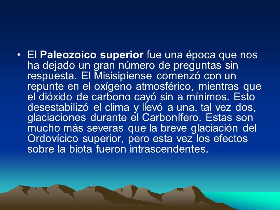 El Paleozoico superior fue una época que nos ha dejado un gran número de preguntas sin respuesta. El Misisipiense comenzó con un repunte en el oxígeno