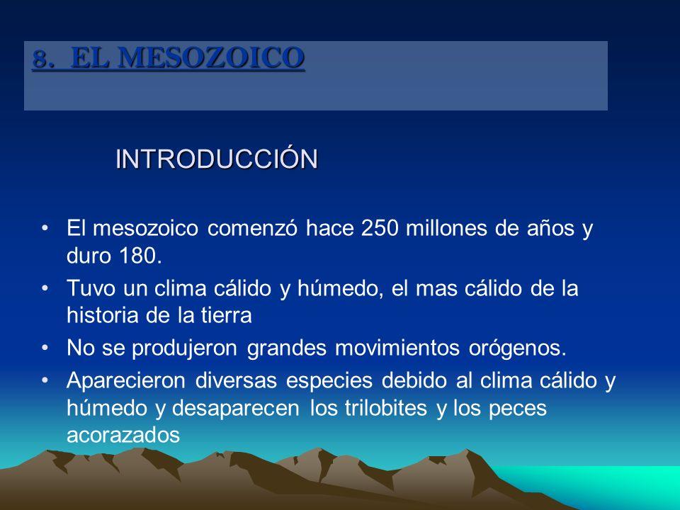 INTRODUCCIÓN El mesozoico comenzó hace 250 millones de años y duro 180. Tuvo un clima cálido y húmedo, el mas cálido de la historia de la tierra No se
