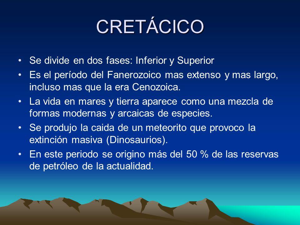 CRETÁCICO Se divide en dos fases: Inferior y Superior Es el período del Fanerozoico mas extenso y mas largo, incluso mas que la era Cenozoica. La vida