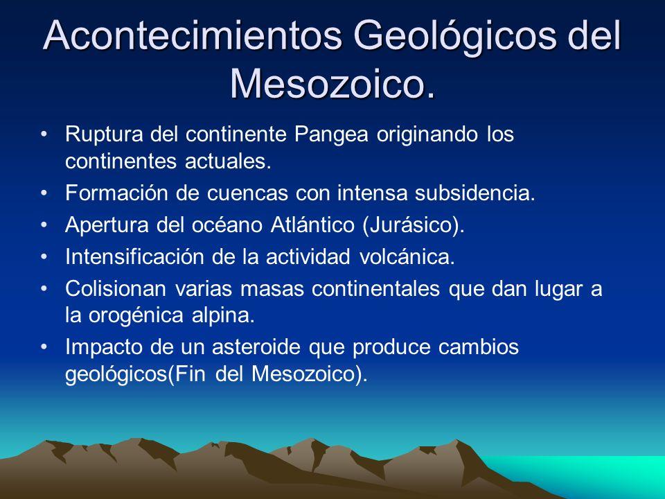 Acontecimientos Geológicos del Mesozoico. Ruptura del continente Pangea originando los continentes actuales. Formación de cuencas con intensa subsiden
