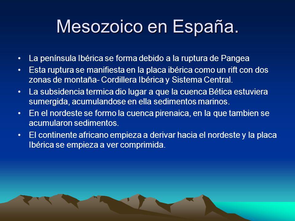Mesozoico en España. La península Ibérica se forma debido a la ruptura de Pangea Esta ruptura se manifiesta en la placa ibérica como un rift con dos z