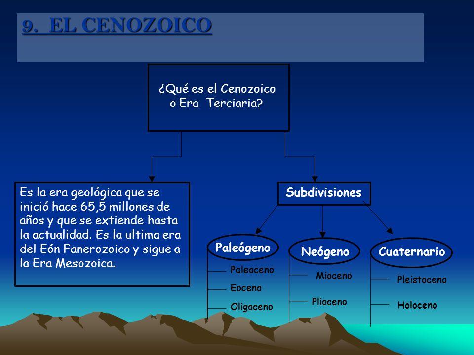 Paleoceno Eoceno Oligoceno ¿Qué es el Cenozoico o Era Terciaria? Es la era geológica que se inició hace 65,5 millones de años y que se extiende hasta