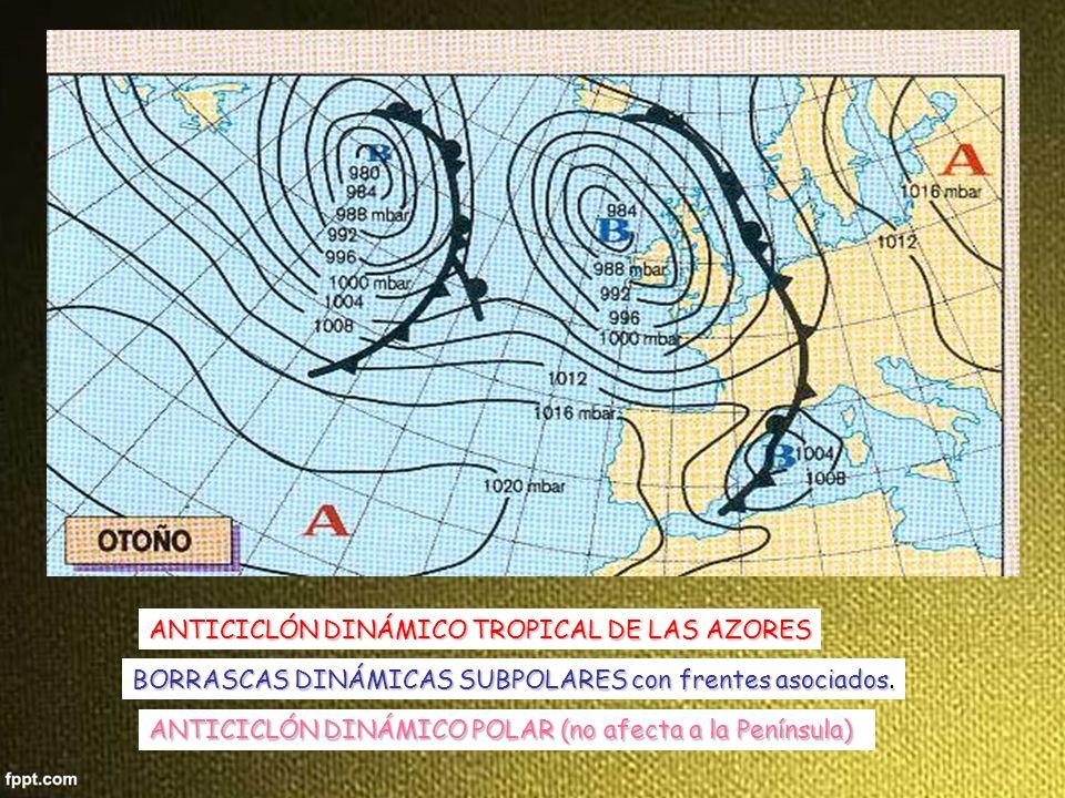 ANTICICLÓN DINÁMICO POLAR (no afecta a la Península) ANTICICLÓN DINÁMICO TROPICAL DE LAS AZORES BORRASCAS DINÁMICAS SUBPOLARES con frentes asociados.