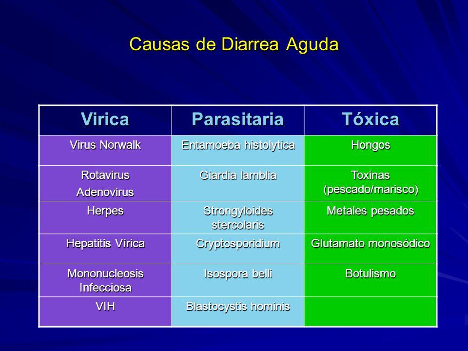 Causas de Diarrea Aguda ViricaParasitariaTóxica Virus Norwalk Entamoeba histolytica Hongos RotavirusAdenovirus Giardia lamblia Toxinas (pescado/marisc