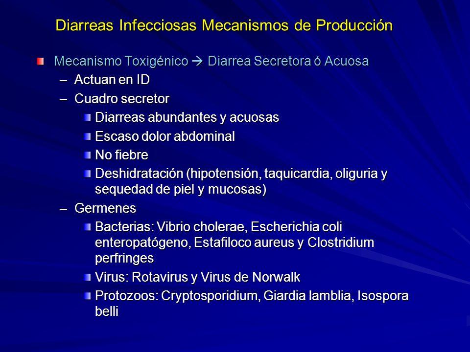 Diarreas Infecciosas Mecanismos de Producción Mecanismo Toxigénico Diarrea Secretora ó Acuosa –Actuan en ID –Cuadro secretor Diarreas abundantes y acuosas Escaso dolor abdominal No fiebre Deshidratación (hipotensión, taquicardia, oliguria y sequedad de piel y mucosas) –Germenes Bacterias: Vibrio cholerae, Escherichia coli enteropatógeno, Estafiloco aureus y Clostridium perfringes Virus: Rotavirus y Virus de Norwalk Protozoos: Cryptosporidium, Giardia lamblia, Isospora belli