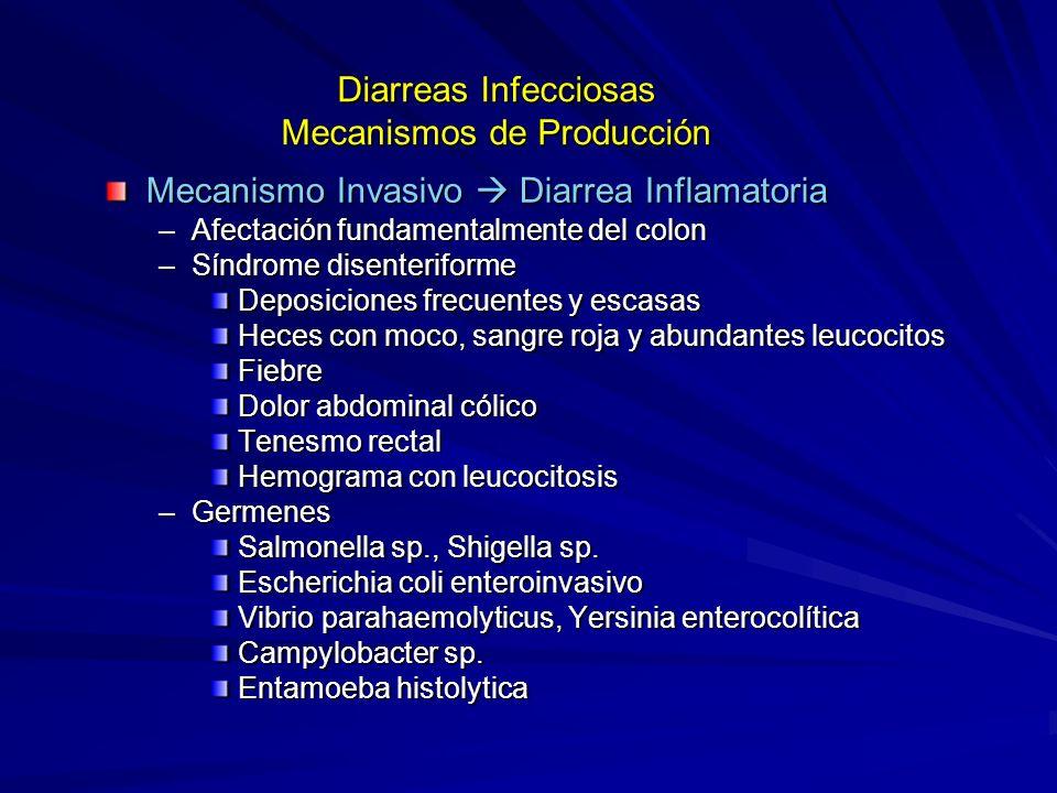Diarreas Infecciosas Mecanismos de Producción Mecanismo Invasivo Diarrea Inflamatoria –Afectación fundamentalmente del colon –Síndrome disenteriforme Deposiciones frecuentes y escasas Heces con moco, sangre roja y abundantes leucocitos Fiebre Dolor abdominal cólico Tenesmo rectal Hemograma con leucocitosis –Germenes Salmonella sp., Shigella sp.