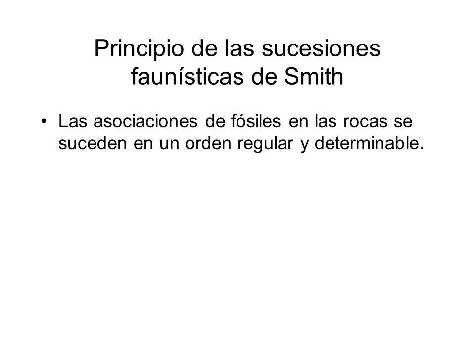 Principio de las sucesiones faunísticas de Smith Las asociaciones de fósiles en las rocas se suceden en un orden regular y determinable.
