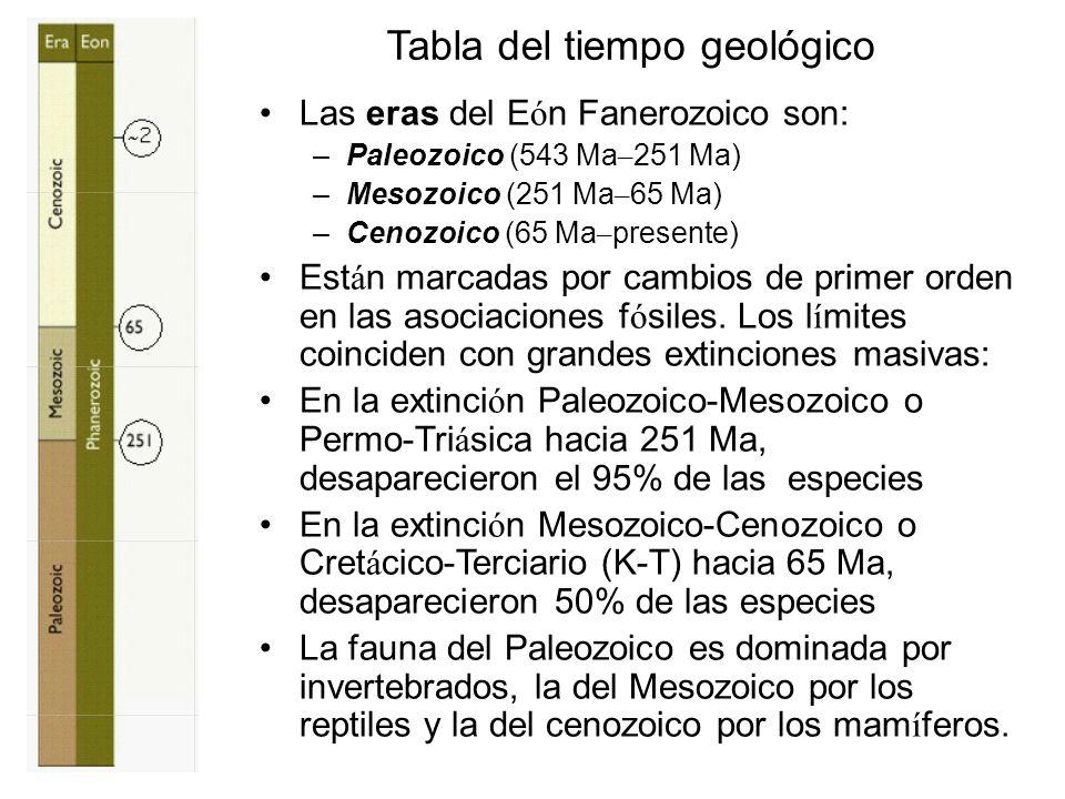 Tabla del tiempo geológico Las eras del E ó n Fanerozoico son: –Paleozoico (543 Ma – 251 Ma) –Mesozoico (251 Ma – 65 Ma) –Cenozoico (65 Ma – presente)