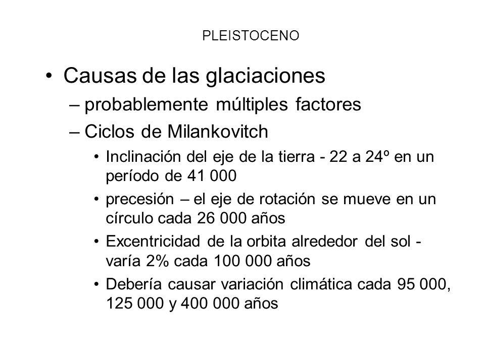 PLEISTOCENO Causas de las glaciaciones –probablemente múltiples factores –Ciclos de Milankovitch Inclinación del eje de la tierra - 22 a 24º en un per