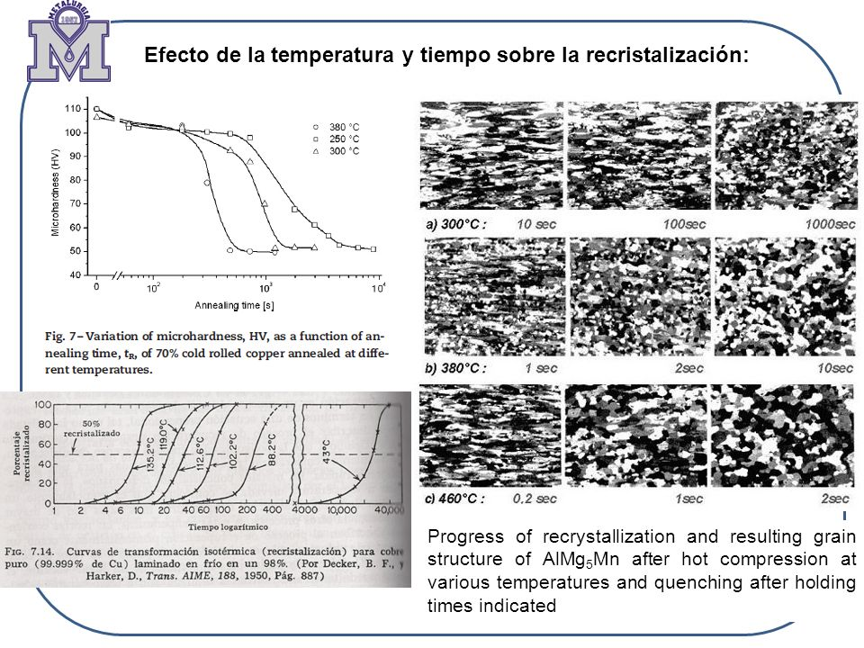 Efecto de la temperatura y tiempo sobre la recristalización: Progress of recrystallization and resulting grain structure of AlMg 5 Mn after hot compre