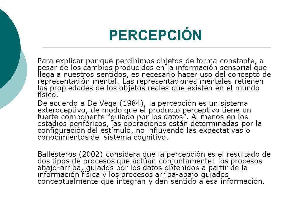 PERCEPCIÓN Para explicar por qué percibimos objetos de forma constante, a pesar de los cambios producidos en la información sensorial que llega a nuestros sentidos, es necesario hacer uso del concepto de representación mental.