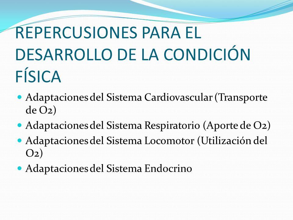 REPERCUSIONES PARA EL DESARROLLO DE LA CONDICIÓN FÍSICA Adaptaciones del Sistema Cardiovascular (Transporte de O2) Adaptaciones del Sistema Respirator