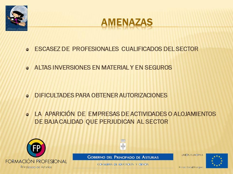 ESCASEZ DE PROFESIONALES CUALIFICADOS DEL SECTOR ALTAS INVERSIONES EN MATERIAL Y EN SEGUROS DIFICULTADES PARA OBTENER AUTORIZACIONES LA APARICIÓN DE E