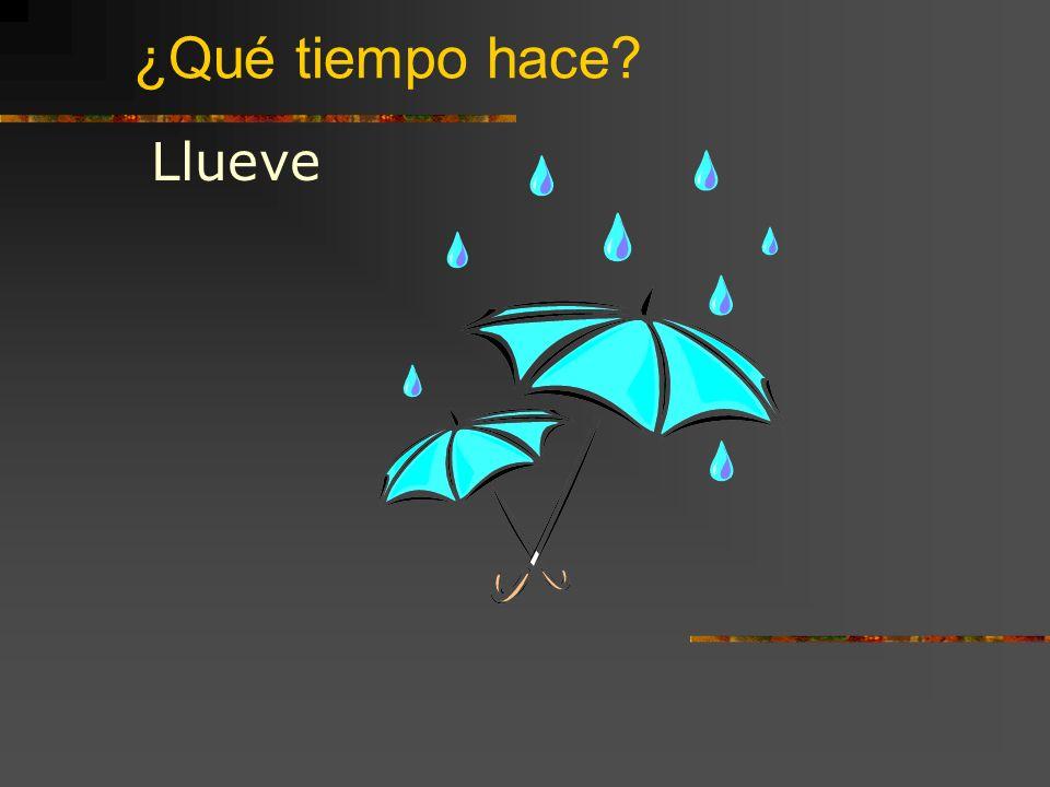 ¿Qué tiempo hace? Llueve