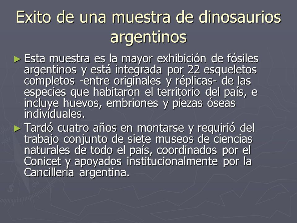Exito de una muestra de dinosaurios argentinos Esta muestra es la mayor exhibición de fósiles argentinos y está integrada por 22 esqueletos completos -entre originales y réplicas- de las especies que habitaron el territorio del país, e incluye huevos, embriones y piezas óseas individuales.
