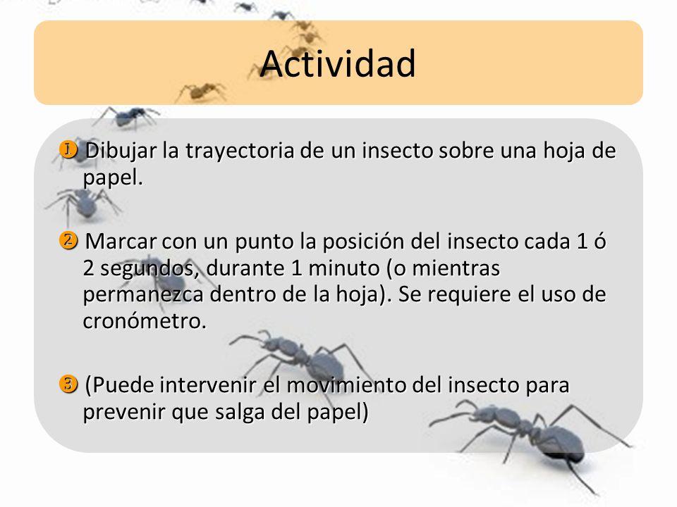 Actividad Dibujar la trayectoria de un insecto sobre una hoja de papel. Dibujar la trayectoria de un insecto sobre una hoja de papel. Marcar con un pu