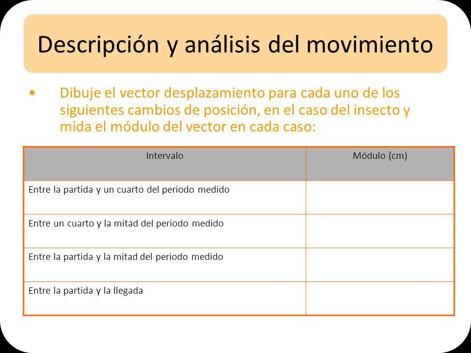 Descripción y análisis del movimiento Dibuje el vector desplazamiento para cada uno de los siguientes cambios de posición, en el caso del insecto y mi