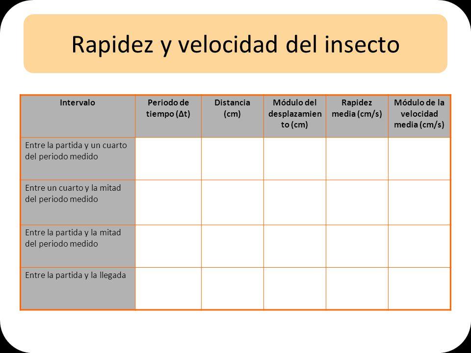 Rapidez y velocidad del insecto IntervaloPeriodo de tiempo (t) Distancia (cm) Módulo del desplazamien to (cm) Rapidez media (cm/s) Módulo de la velocidad media (cm/s) Entre la partida y un cuarto del periodo medido Entre un cuarto y la mitad del periodo medido Entre la partida y la mitad del periodo medido Entre la partida y la llegada