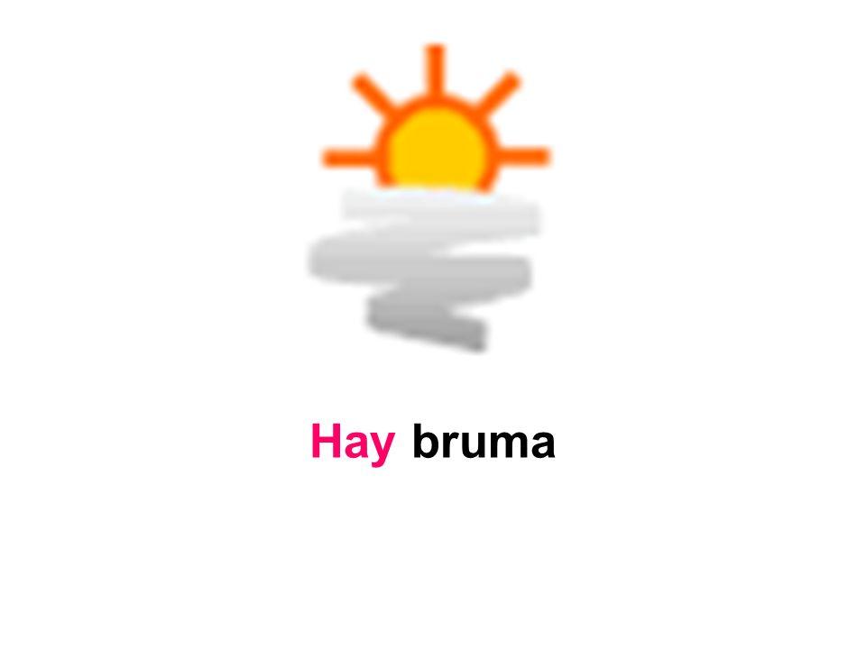 Hay bruma