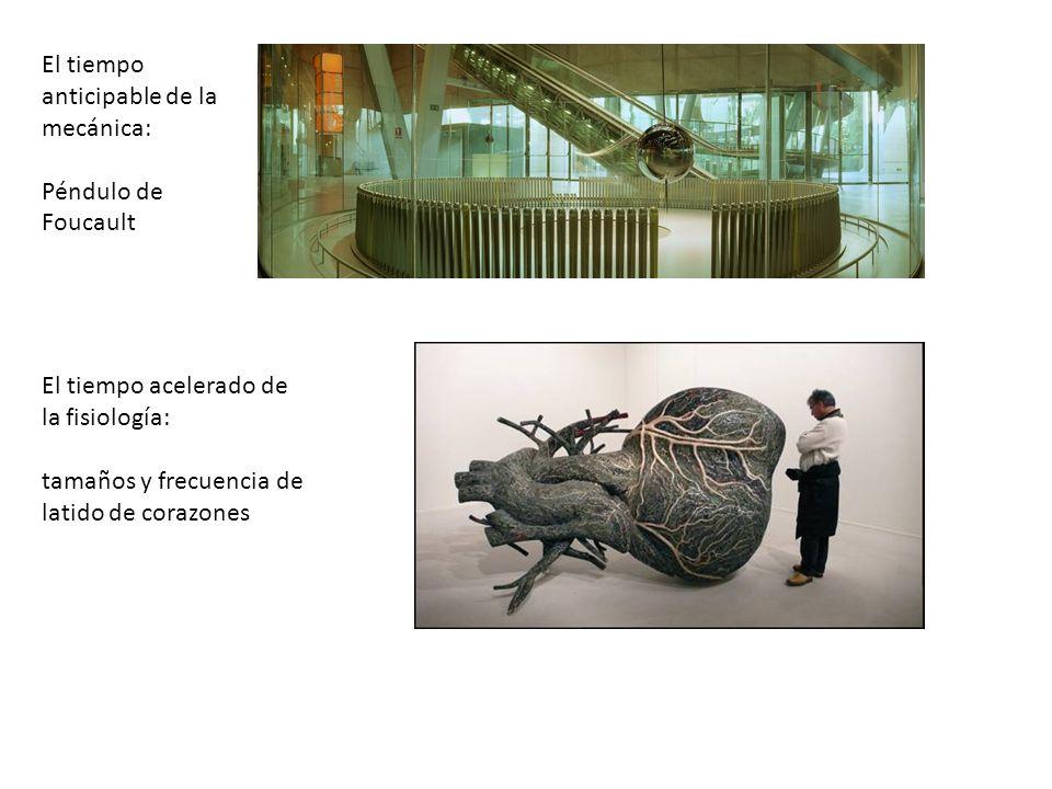 El tiempo anticipable de la mecánica: Péndulo de Foucault El tiempo acelerado de la fisiología: tamaños y frecuencia de latido de corazones
