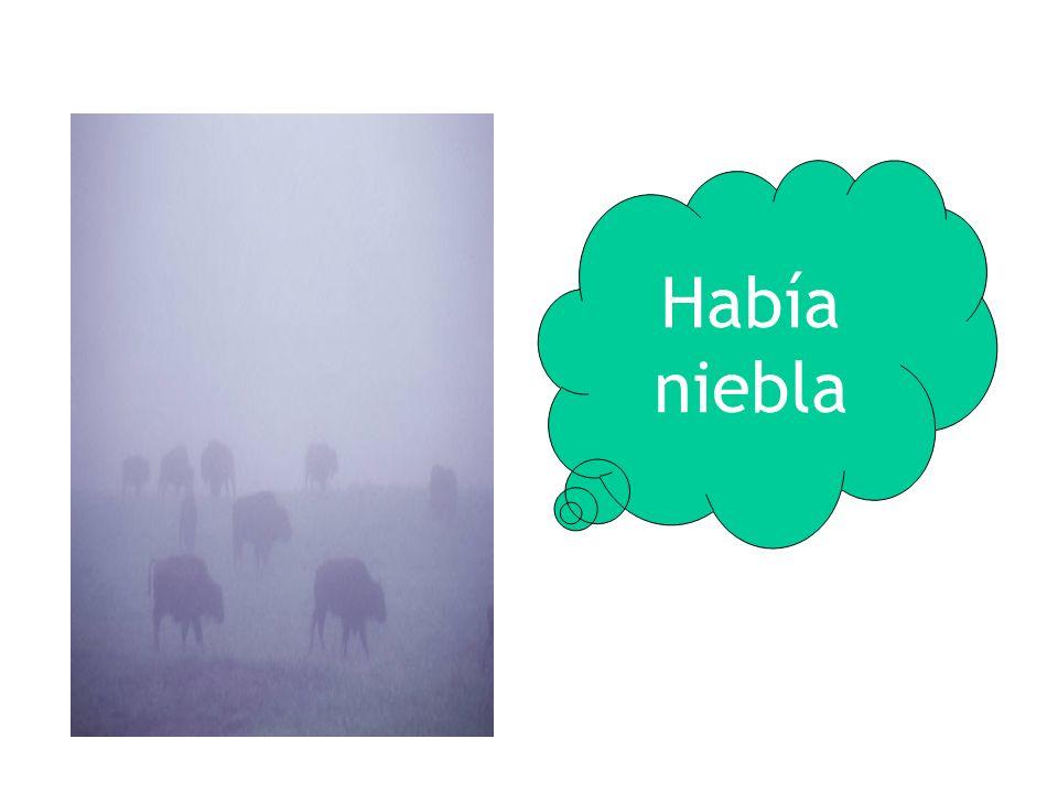 Había niebla