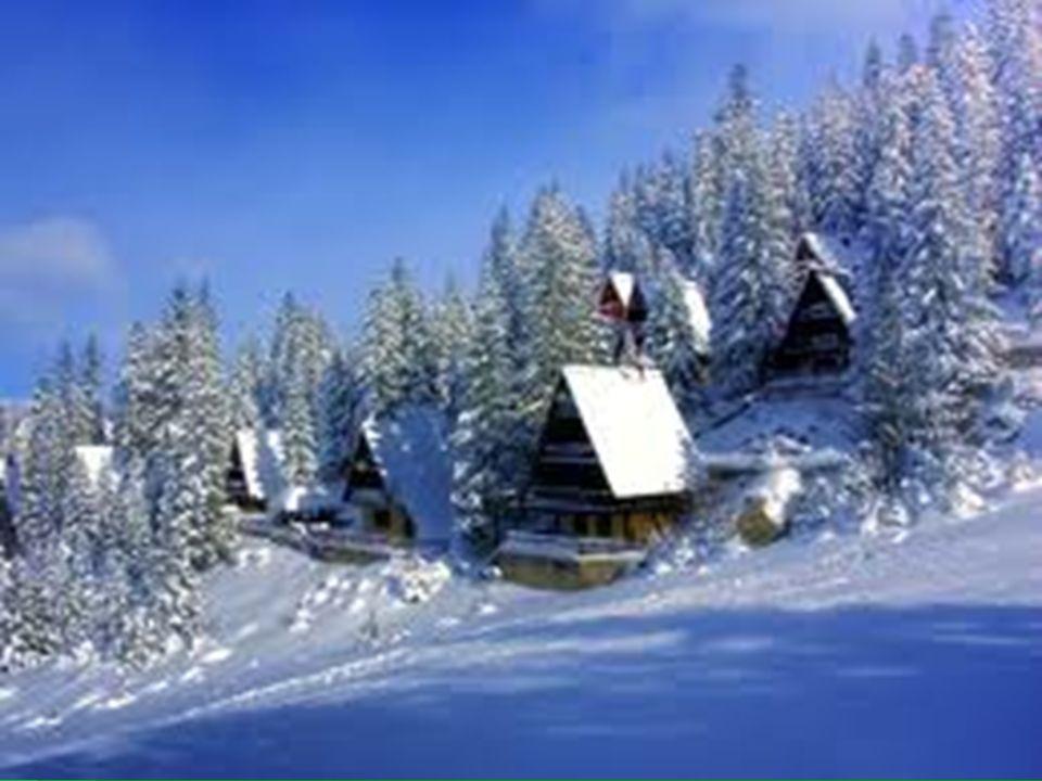 ¿Sí o no.En el invierno, nieva en Canadá. En el invierno, nieva en Canadá.