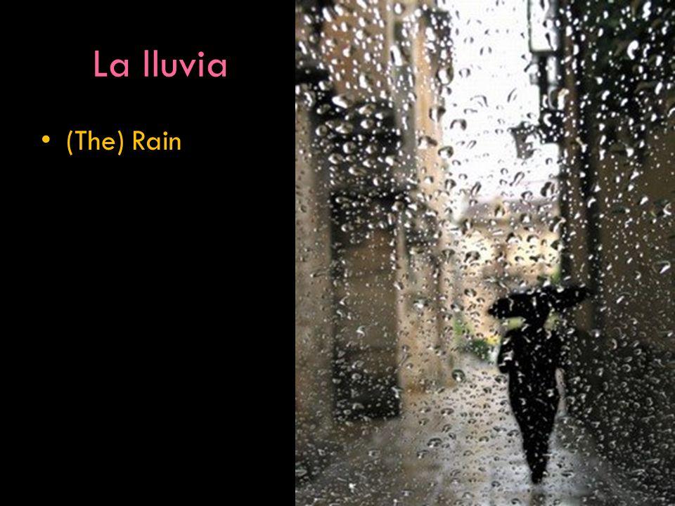 La lluvia (The) Rain