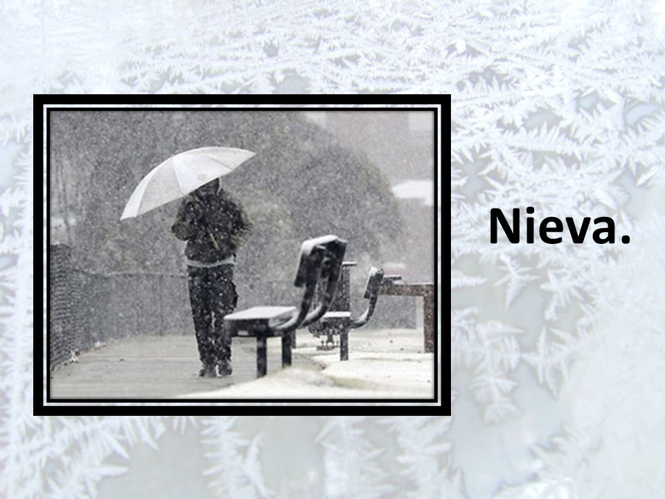 Nieva.