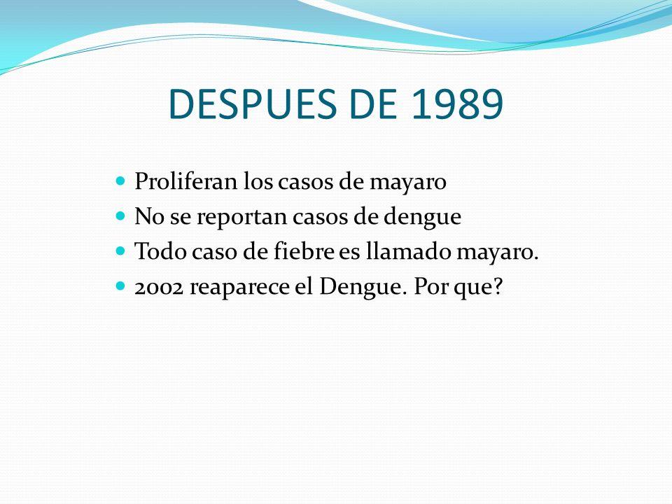DESPUES DE 1989 Proliferan los casos de mayaro No se reportan casos de dengue Todo caso de fiebre es llamado mayaro. 2002 reaparece el Dengue. Por que