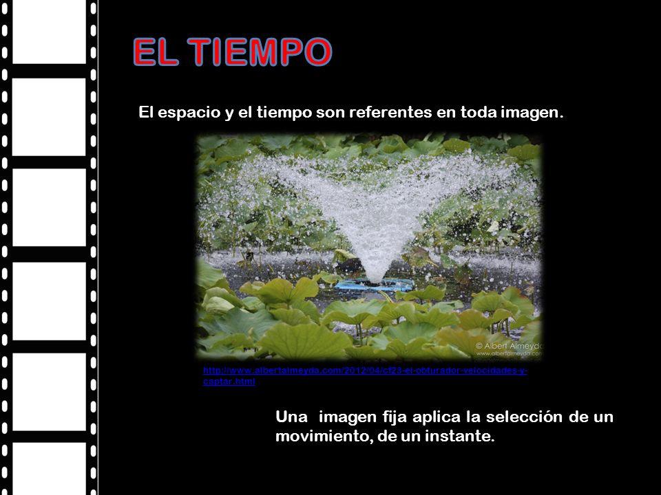 Velocidad de obturación Las altas velocidades de obturación: por ejemplo: 1/1000 o 1/2000 congelan el movimiento muy rápido, imposible de observar por el ojo humano Propiedad de Andrew Davidhazy (www.rit.edu/~andpph ) http://www.ocelata.com/legal.html http://www.xatakafoto.com/curso-de-fotografia/curso-de- fotografia-12-velocidad-de-obturacion