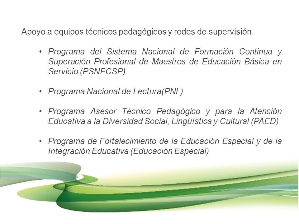 Apoyo a equipos técnicos pedagógicos y redes de supervisión. Programa del Sistema Nacional de Formación Continua y Superación Profesional de Maestros