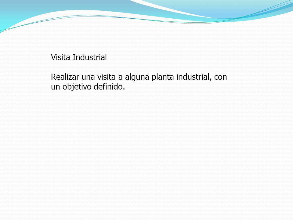 Visita Industrial Realizar una visita a alguna planta industrial, con un objetivo definido.