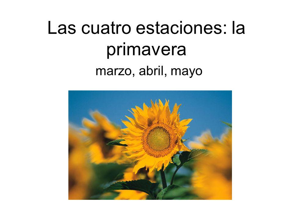 Las cuatro estaciones: la primavera marzo, abril, mayo
