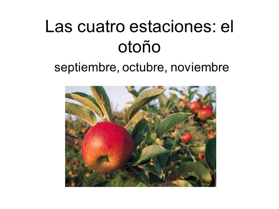 Las cuatro estaciones: el otoño septiembre, octubre, noviembre