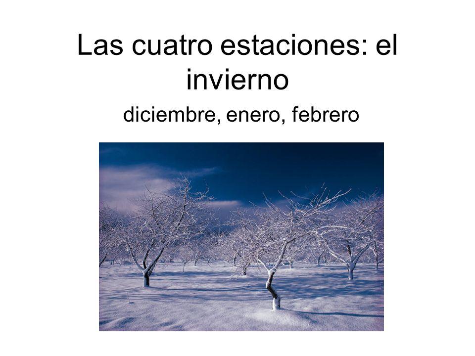 Las cuatro estaciones: el invierno diciembre, enero, febrero