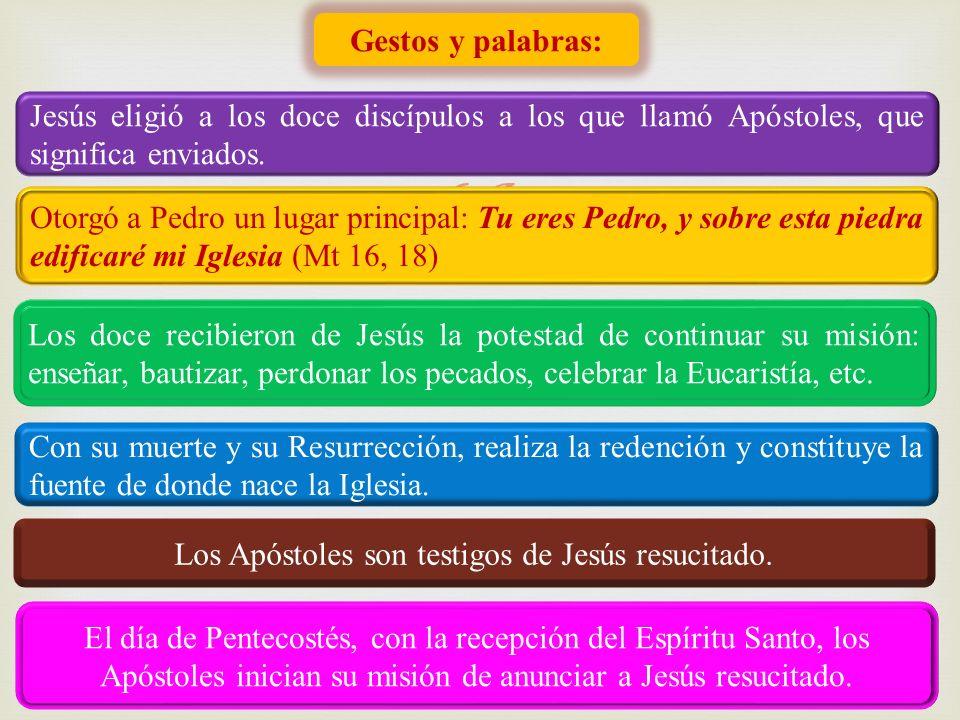 Gestos y palabras: Jesús eligió a los doce discípulos a los que llamó Apóstoles, que significa enviados. Otorgó a Pedro un lugar principal: Tu eres Pe