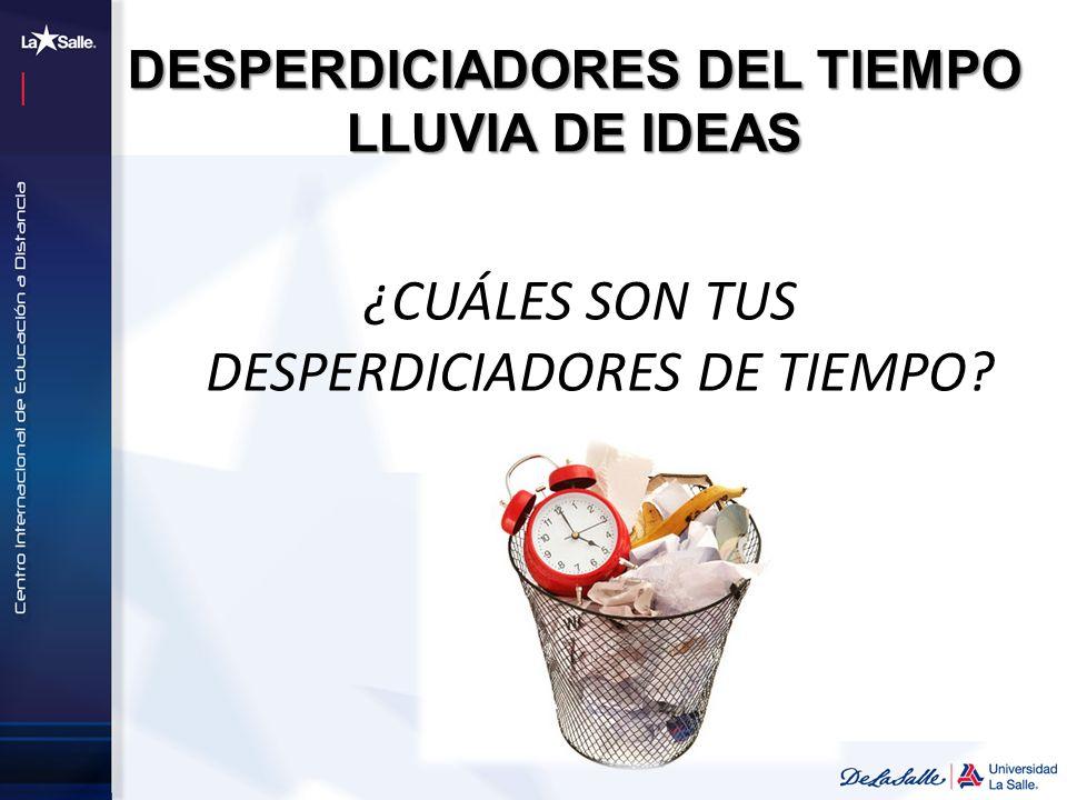 DESPERDICIADORES DEL TIEMPO LLUVIA DE IDEAS ¿CUÁLES SON TUS DESPERDICIADORES DE TIEMPO?