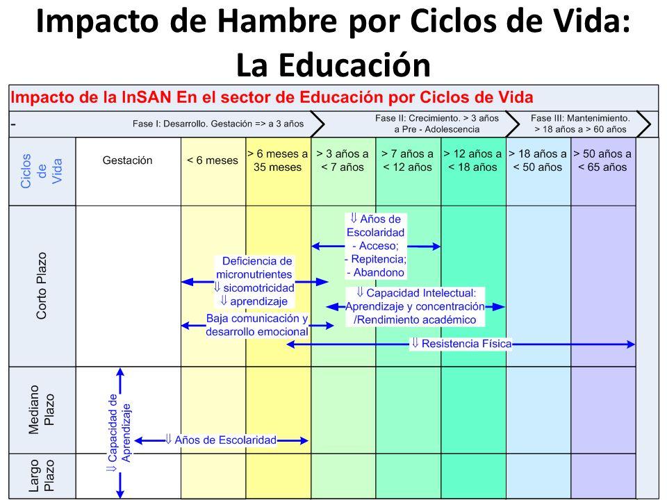 Impacto de Hambre por Ciclos de Vida: La Educación