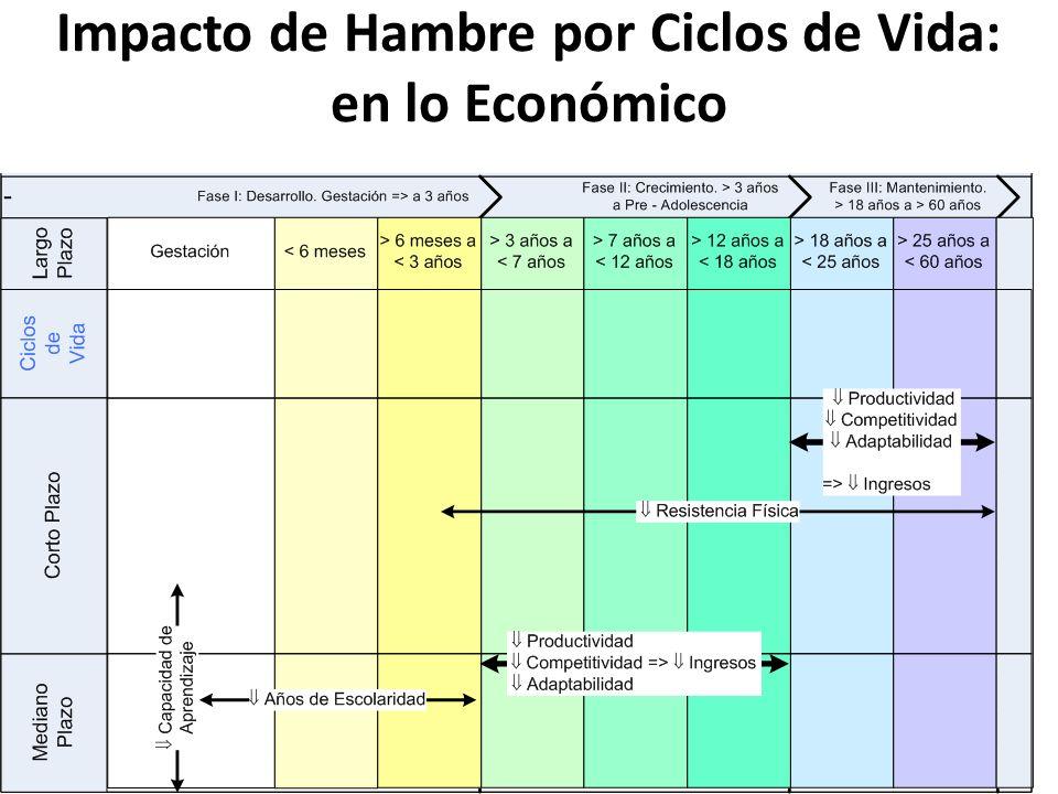 Impacto de Hambre por Ciclos de Vida: en lo Económico