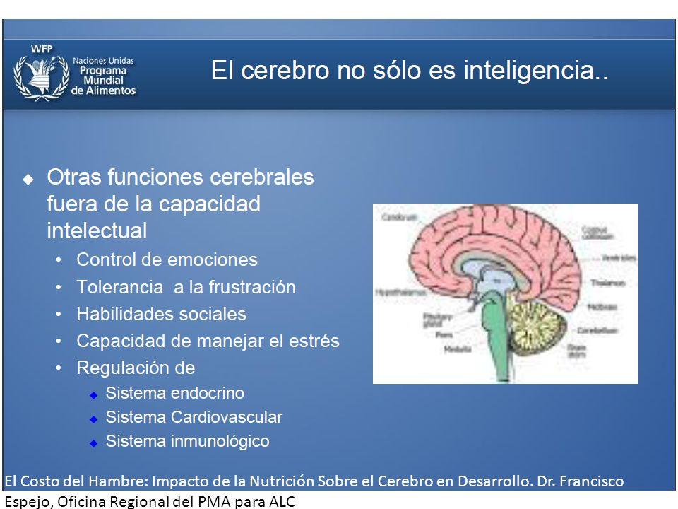 El Costo del Hambre: Impacto de la Nutrición Sobre el Cerebro en Desarrollo. Dr. Francisco Espejo, Oficina Regional del PMA para ALC
