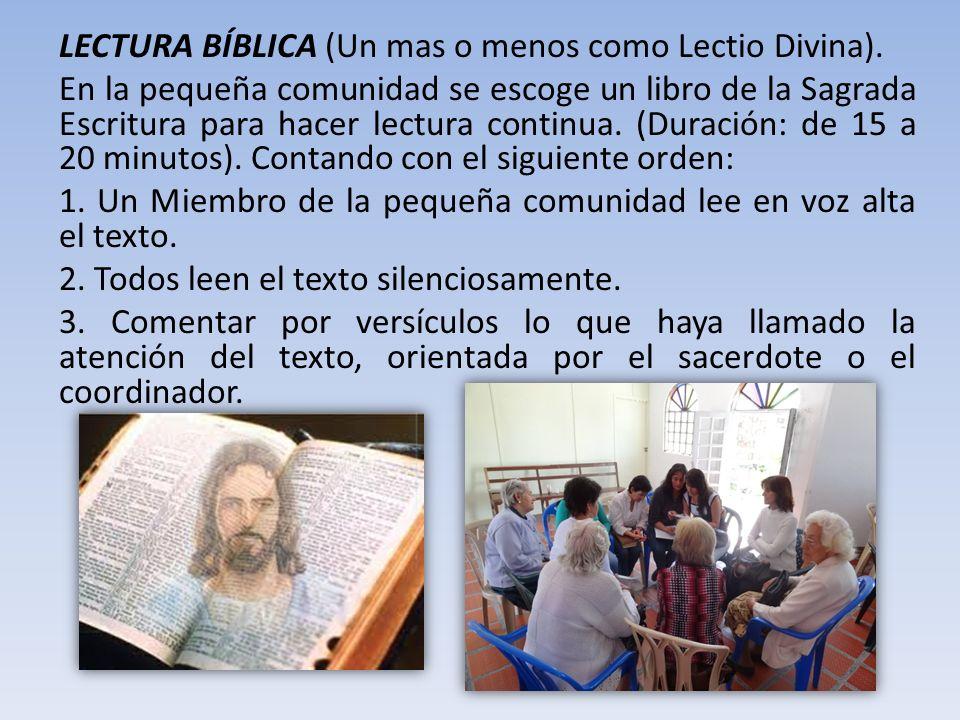 LECTURA BÍBLICA (Un mas o menos como Lectio Divina). En la pequeña comunidad se escoge un libro de la Sagrada Escritura para hacer lectura continua. (