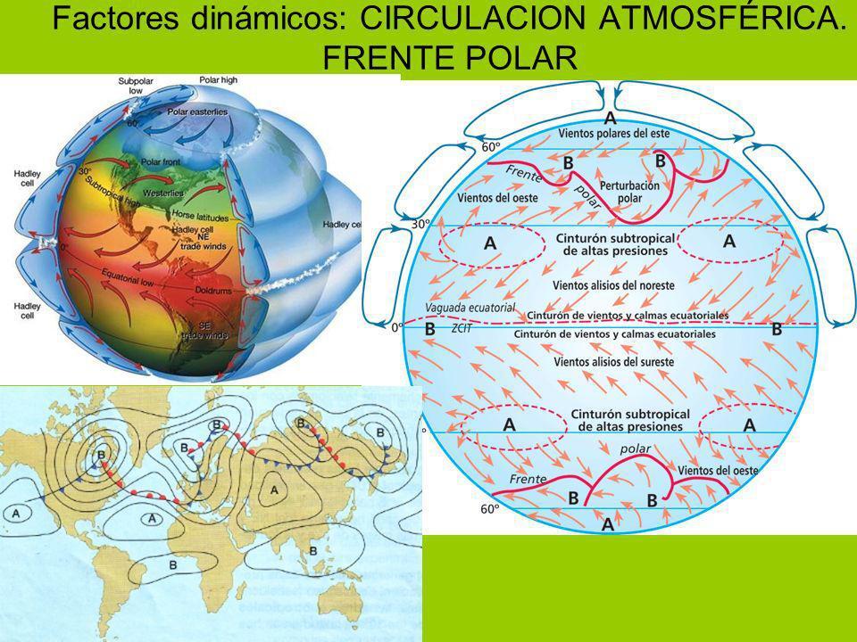 Factores dinámicos: CIRCULACION ATMOSFÉRICA. FRENTE POLAR