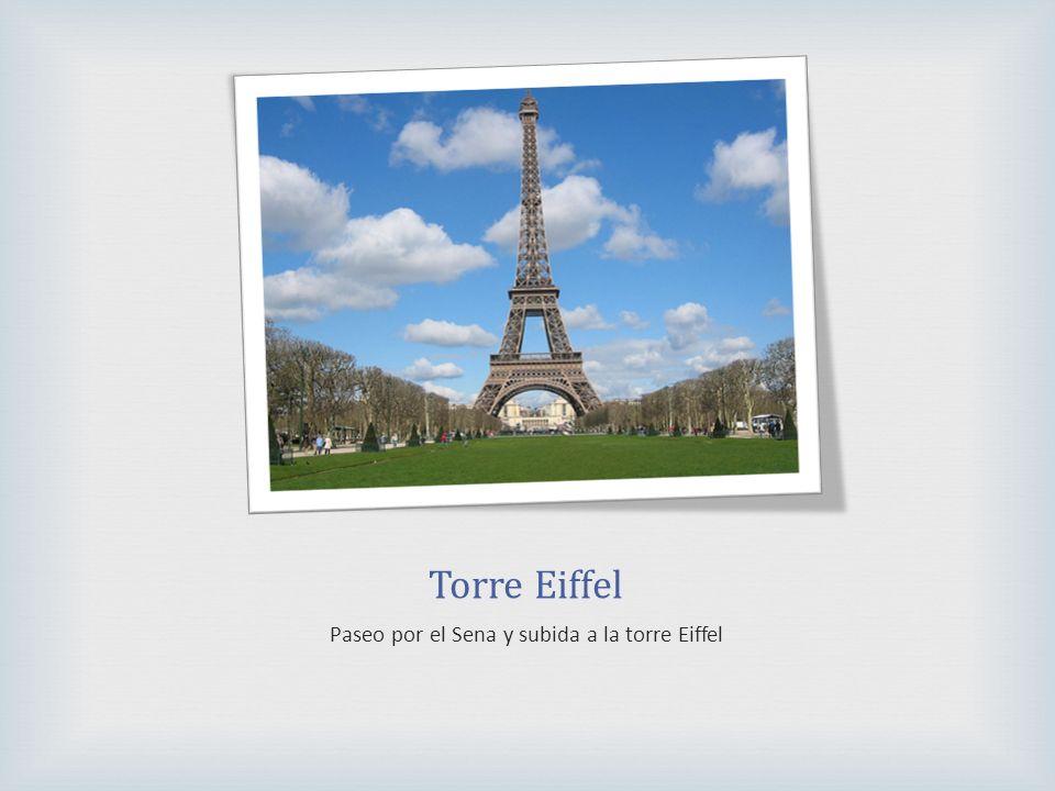 Torre Eiffel Paseo por el Sena y subida a la torre Eiffel