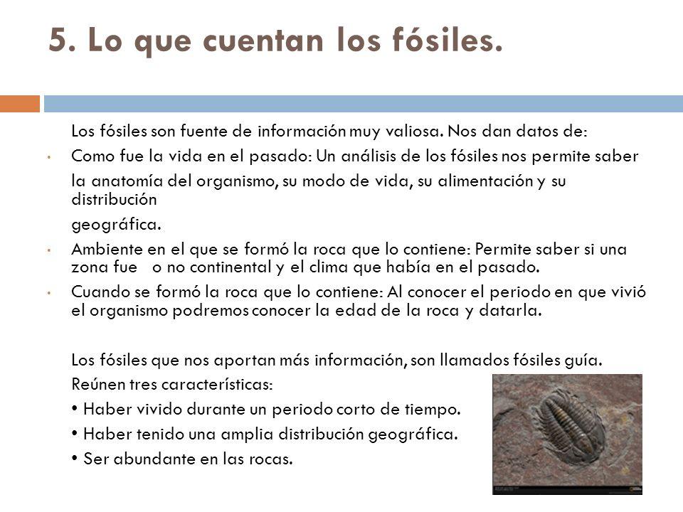 5. Lo que cuentan los fósiles. Los fósiles son fuente de información muy valiosa. Nos dan datos de: Como fue la vida en el pasado: Un análisis de los