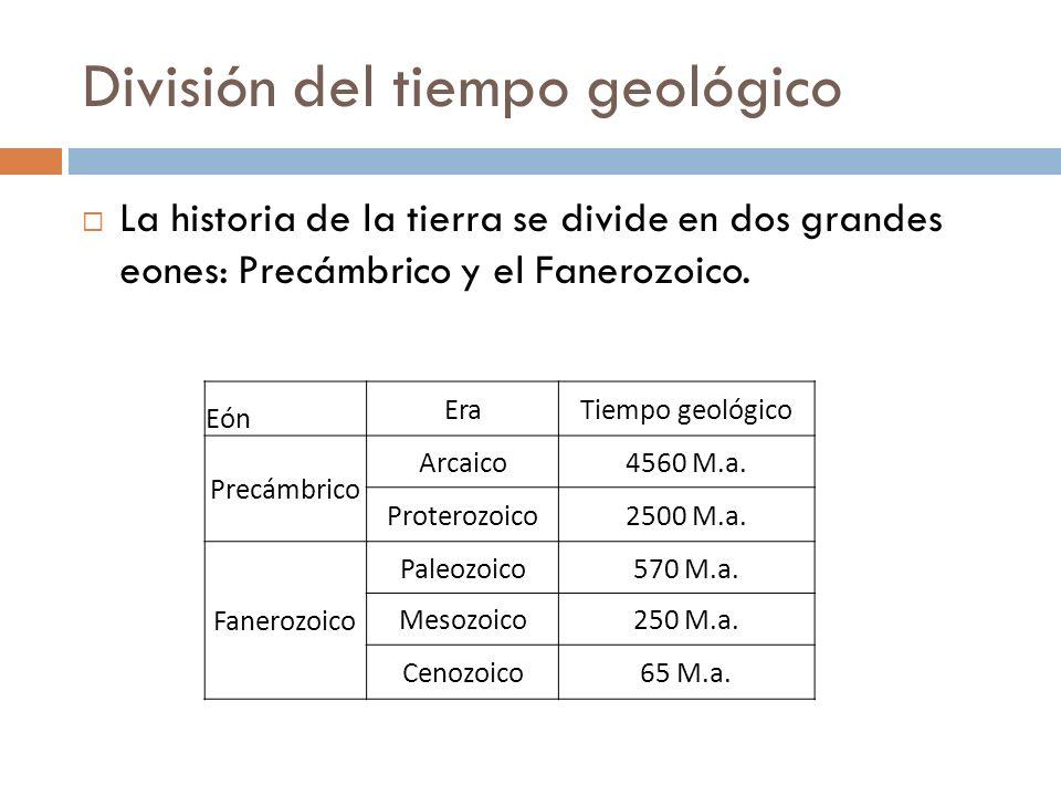 División del tiempo geológico La historia de la tierra se divide en dos grandes eones: Precámbrico y el Fanerozoico. Eón EraTiempo geológico Precámbri