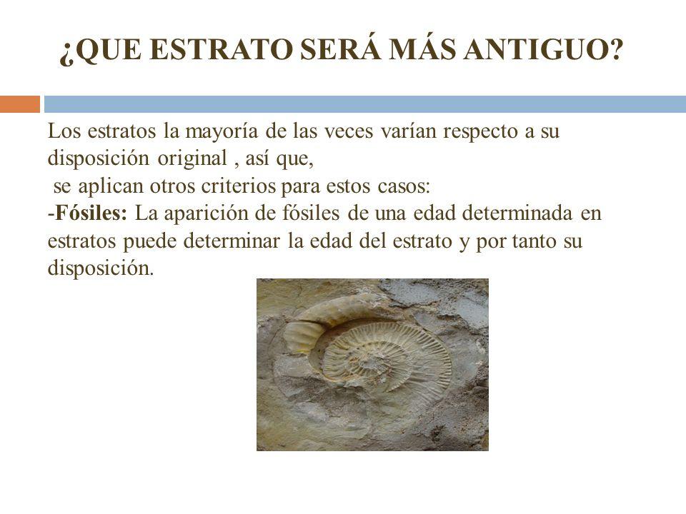 Los estratos la mayoría de las veces varían respecto a su disposición original, así que, se aplican otros criterios para estos casos: -Fósiles: La apa