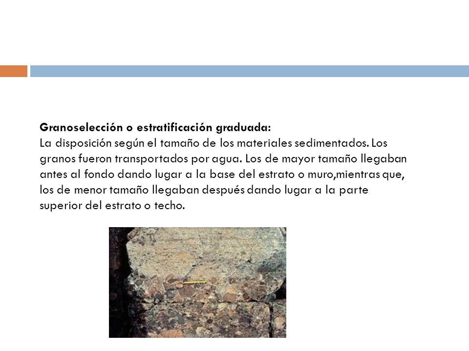 Granoselección o estratificación graduada: La disposición según el tamaño de los materiales sedimentados. Los granos fueron transportados por agua. Lo